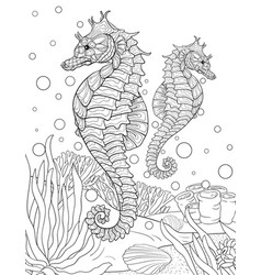 seahorse coloring pages 6 | Diana Ang | Flickr | 250x238