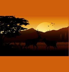 Animals silhouette at sutset vector