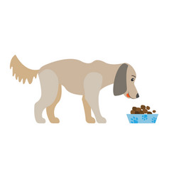 Dog eating food from bowl isolated cartoon canine vector
