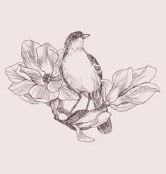 Hand drawn bird on magnolia vector