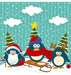 Penguins winter christmas vector image