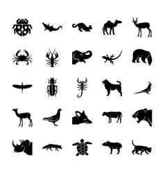 Wildlife solid icons set vector