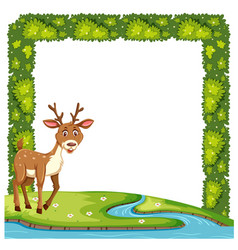 A cute deer in nature frame vector
