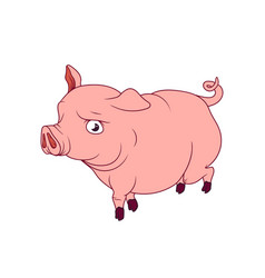 Big pink pig with curled tail walking vector
