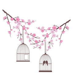 bird love cage vector image