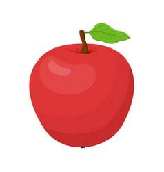 cartoon red apple tasty vegetarian fruit vector image