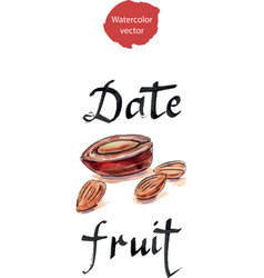 Date fruit arabian delights vector