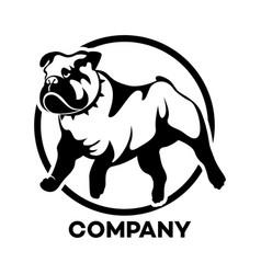 Dog english bulldog logo vector