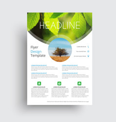 Flyer format a4 format with round vector