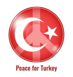 peace for Turkey vector image