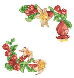 pomegranate corner frame decorative elements vector image