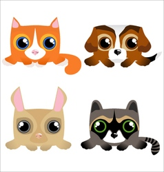 Cute funny pets vector image