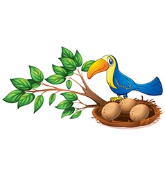 A blue bird above the branch of a tree vector image