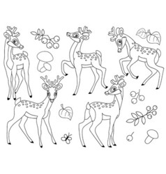 Black And White Deers vector