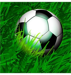 Football over close up grass vector image