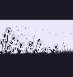landscape with field dandelion vector image