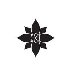 poinsettia black concept icon poinsettia vector image