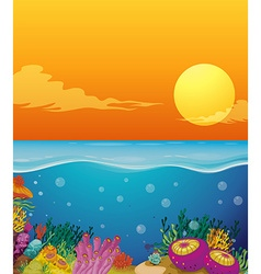 Scene with coral reef under the ocean vector