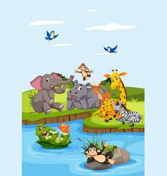 wild animals next to river vector image