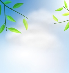 Natural Background with Branch Tree vector image vector image