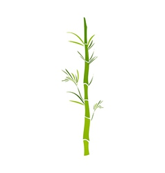 A bamboo vector
