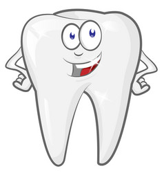 Glad strong shielded cheerful cartoon tooth vector