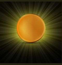 golden coin lights vector image