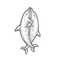 hugging dolphins sketch vector image