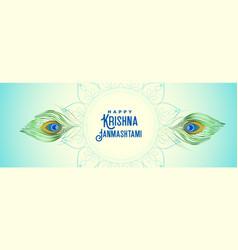 Peacock feather banner for krishna janmashtami vector