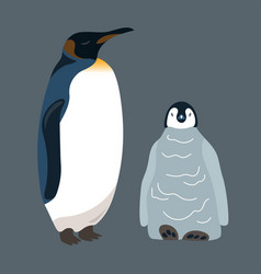 penguin and little penguin vector image
