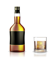 Set whiskey rum bourbon or cognac glasses and vector