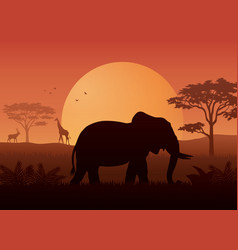 silhouette animals on evening at savanah vector image