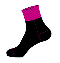 socks in on white background vector image
