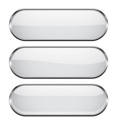white oval buttons with chrome frame vector image