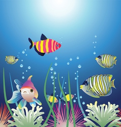 aquarium and colorful fishes vector image vector image