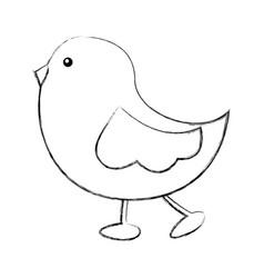 cute little bird walking vector image