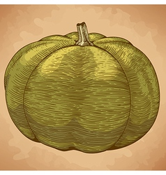 Engraving pumpkin retro vector