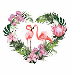 exotic pink flamingo birds couple heart vector image