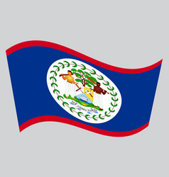 Flag of belize waving on gray background vector