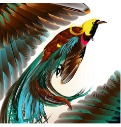 tropical bird with feathers vector image