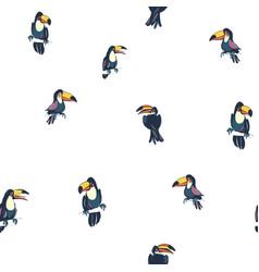 tropical exotic birds parrots toucans summer vector image