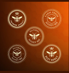 bee label and badge vector image vector image