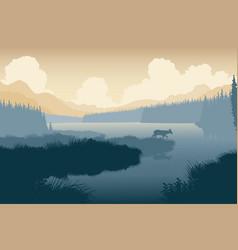 wilderness deer vector image vector image