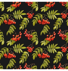 Autumn Rowan Berry Background Seamless Pattern vector image