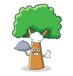 Chef tree character cartoon style vector