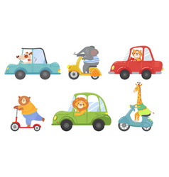 Cute animals on transport animal on scooter vector