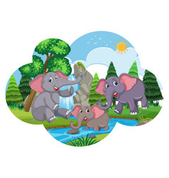 Cute elephants playing in water vector