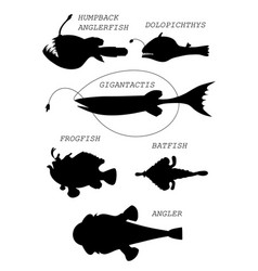 Deep-sea fishes black silhouette vector