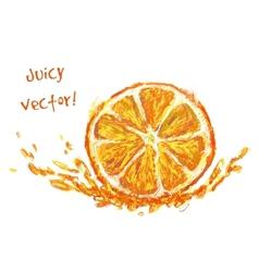 drawing slice of orange vector image