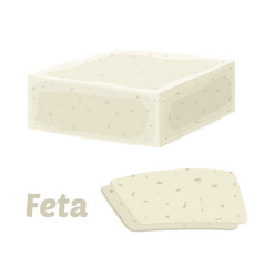 Feta cheese block cartoon flat style vector